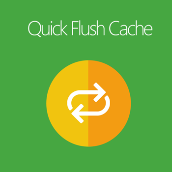 Magento 2 Quick Flush Cache extension