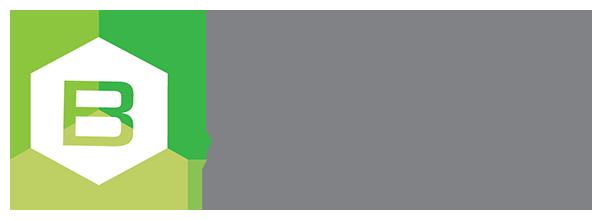 brimllc logo